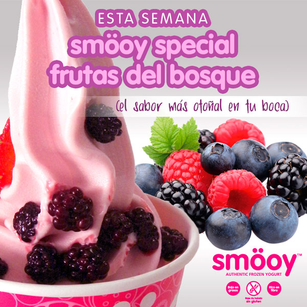sabor smooy special frutos del bosque